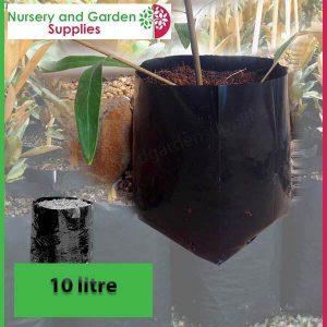 10 litre Standard Poly Planter Bags at Nursery and Garden Supplies - for more info go to nurseryandgardensupplies.com.au