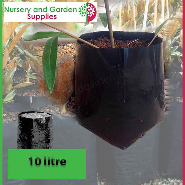 10 litre Standard Poly Planter Bags at Nursery and Garden Supplies - for more info go to nurseryandgardensupplies.com.au