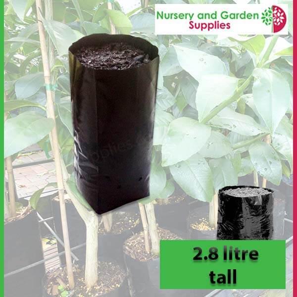 2.8 litre Tall Poly Planter Bags at Nursery and Garden Supplies - for more info go to nurseryandgardensupplies.com.au