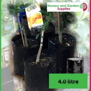 4 litre Poly Planter Bags at Nursery and Garden Supplies - for more info go to nurseryandgardensupplies.com.au
