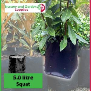 5 litre Squat Poly Planter Bags at Nursery and Garden Supplies - for more info go to nurseryandgardensupplies.com.au