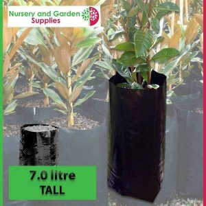 7 litre Tall Poly Planter Bags at Nursery and Garden Supplies - for more info go to nurseryandgardensupplies.com.au
