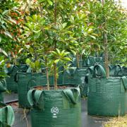 Woven Planter Bags 100 ltr