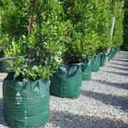 Woven Planter Bags 100 ltr 3