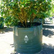 Woven Planter Bags 200 ltr 2