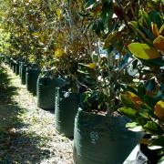 Woven Planter Bags 200 ltr 3