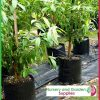 20 litre Squat Poly Planter Bags at Nursery and Garden Supplies - for more info go to nurseryandgardensupplies.com.au