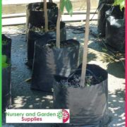 Poly-35-litre-Plant-bags-NG-2