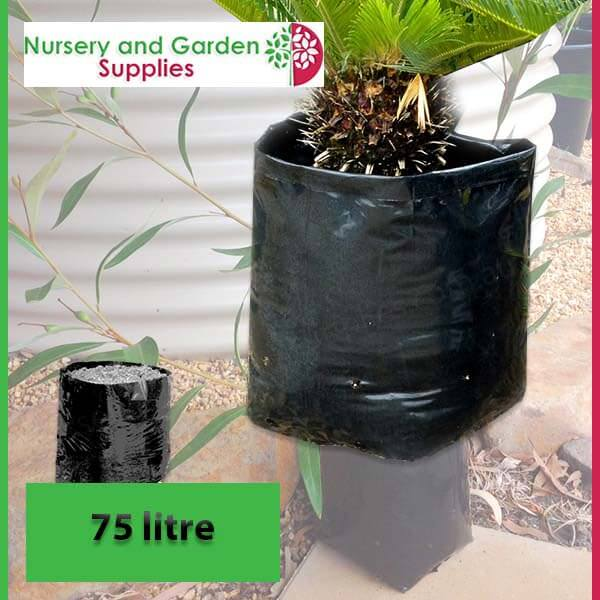 75 litre Poly Planter Bags at Nursery and Garden Supplies - for more info go to nurseryandgardensupplies.com.au