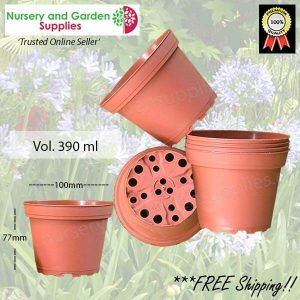 100mm Squat Teku Pot Terracotta - for more info go to nurseryandgardensupplies.com.au