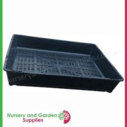 Seedling-tray-restricted-drainage-3