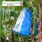 Banana Fruit Bunch Cover Blue - Nursery and Garden Supplies - For more information go to Nurseryandgardensupplies.com.au