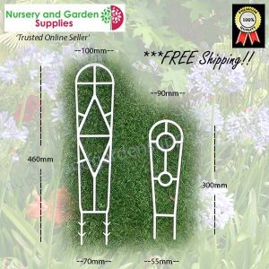 450mm Plant Ladder Trainer - for more info go to nurseryandgardensupplies.com.au