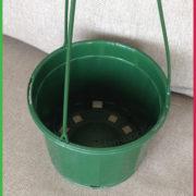 0 115mm Hanging pot Jade 6