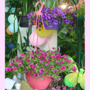 0 200mm hanging Basket pink 3