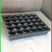 0 30 cell Round tray 3