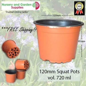 120mm SQUAT Teku Plant Pot - for more info go to nurseryandgardensupplies.com.au