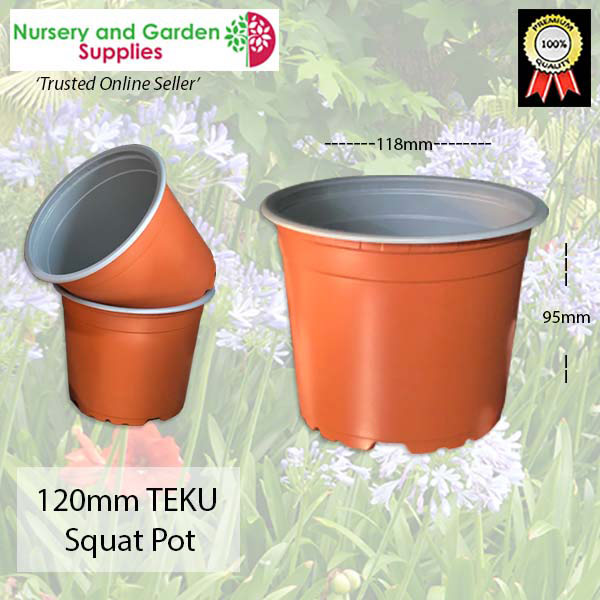 120mm SQUAT Teku Plant Pot T/C