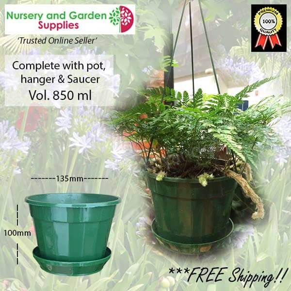 140mm Hanging pot Green - for more info go to nurseryandgardensupplies.com.au