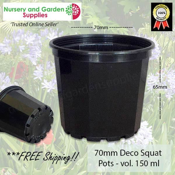 70mm Decorative Plant Pot - for more info go to nurseryandgardensupplies.com.au