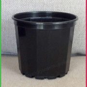 70mm-decorative-plant-Pot-Black-3