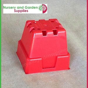 100mm Square Squat Punnet Pot Red For Herbs Etc