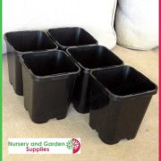 85mm-Square-plant-pot-black-3