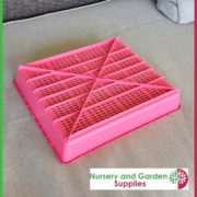 Seedling-tray-restricted-drainage-Pink-2
