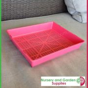 Seedling-tray-restricted-drainage-Pink-4