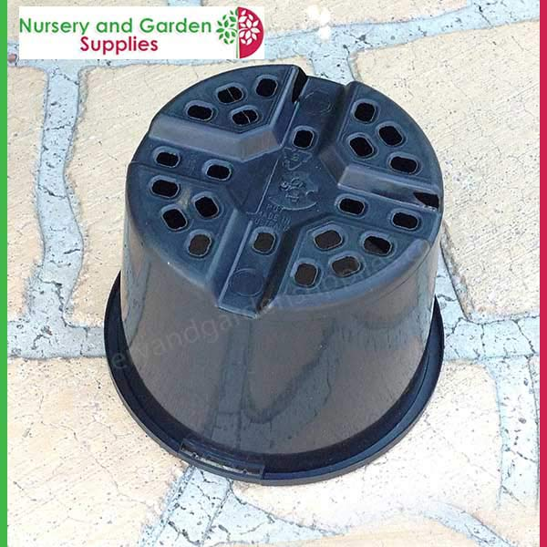 110mm Squat Plant Pot - for more info go to nurseryandgardensupplies.com.au