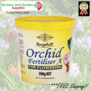 0-Camp-Orchid-A-500g-1