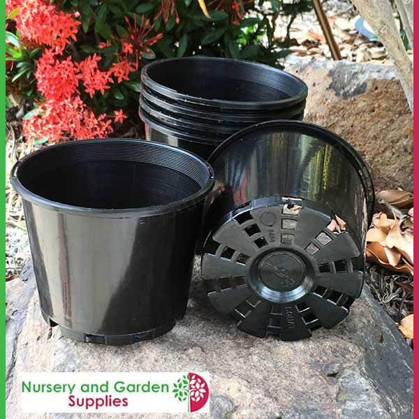 125mm Squat Plant Pot Black Nursery And Garden Supplies