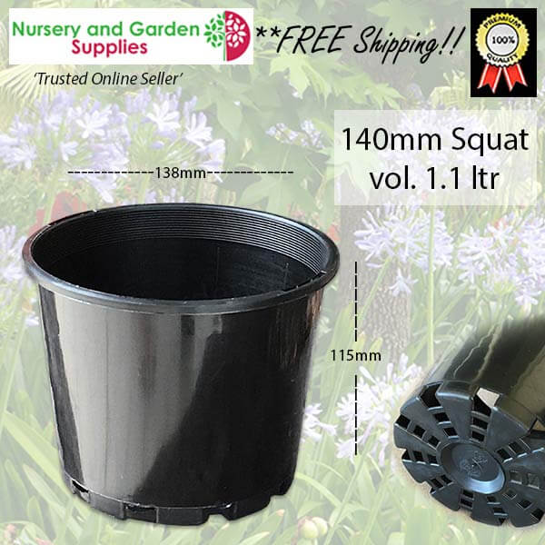 140mm Squat Plant Pot - for more info go to nurseryandgardensupplies.com.au