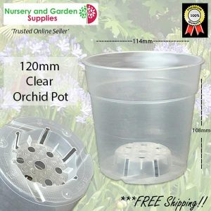 120mm Clear Phalaenopsis Pot - for more info go to nurseryandgardensupplies.com.au