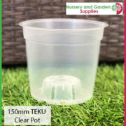 150mm-Clear-Pot-Orchid-TEKU-2