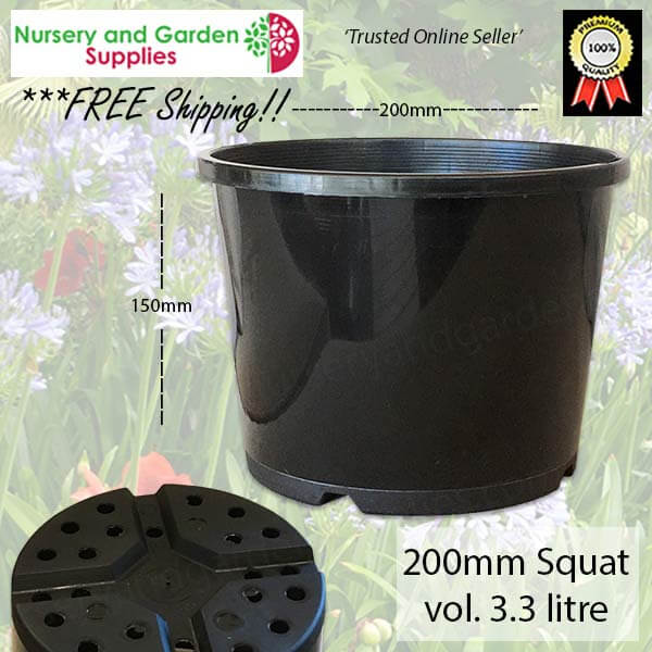 200mm Squat Plant Pot - for more info go to nurseryandgardensupplies.com.au