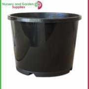 200mm-Squat-Plant-Pot-2