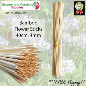 40cm Bamboo Sticks - for more info go to nurseryandgardensupplies.com.au