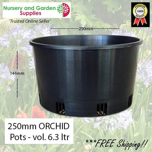 250mm ORCHID Squat Pot - for more info go to nurseryandgardensupplies.com.au