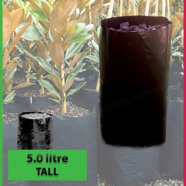 5 litre Tall Poly Planter Bags at Nursery and Garden Supplies - for more info go to nurseryandgardensupplies.com.au