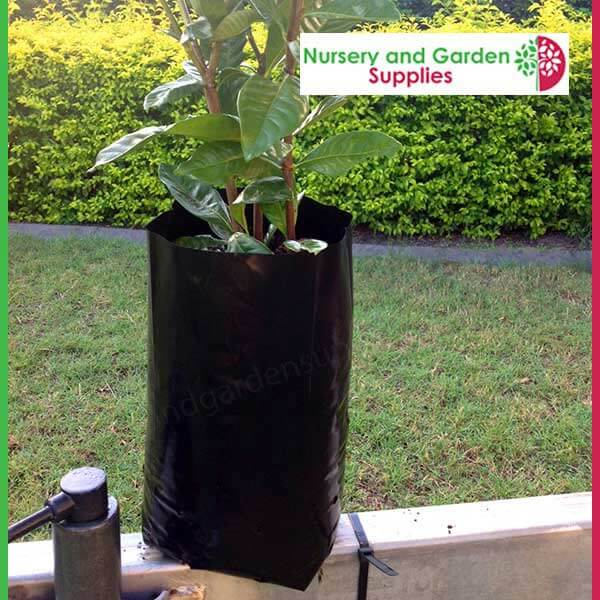 5 Litre Tall Poly Planter Bags Grow Your Plants With Ease