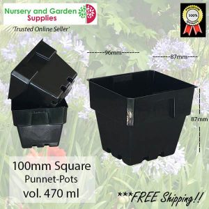100mm Square Squat Punnet-Pot Black - for more info go to nurseryandgardensupplies.com.au