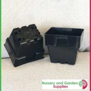 100mm-Square-Punnet-Pot-Black-3
