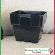 100mm-Square-Punnet-Pot-Black-4