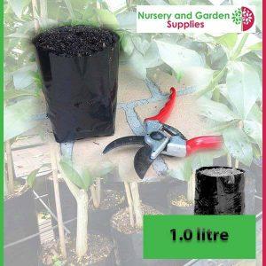 1 litre Poly Planter Bags at Nursery and Garden Supplies - for more info go to nurseryandgardensupplies.com.au