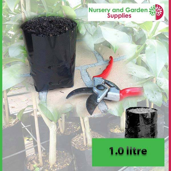 1 litre Poly Planter Bags at Nursery and Garden Supplies - for more info go to nurseryandgardensupplies.com.au