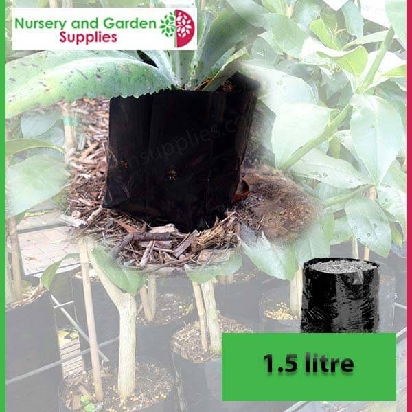 1.5 litre Poly Planter Bags at Nursery and Garden Supplies - for more info go to nurseryandgardensupplies.com.au