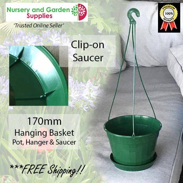 170mm Hanging Basket Green - for more info go to nurseryandgardensupplies.com.au