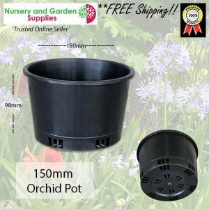 150mm ORCHID Squat Pot - for more info go to nurseryandgardensupplies.com.au