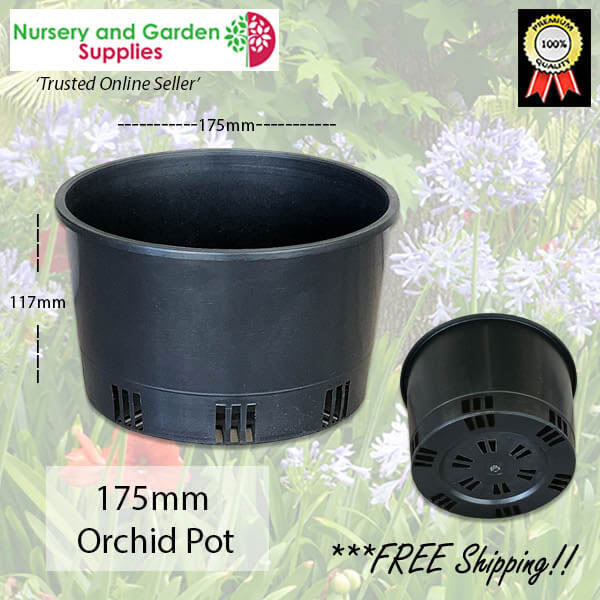 175mm ORCHID Squat Pot - for more info go to nurseryandgardensupplies.com.au